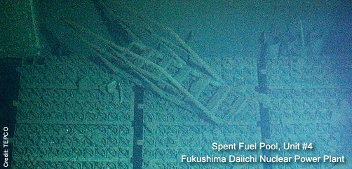 Fukushima Unit #4 Spent Fuel Pool - ALLOW IMAGES