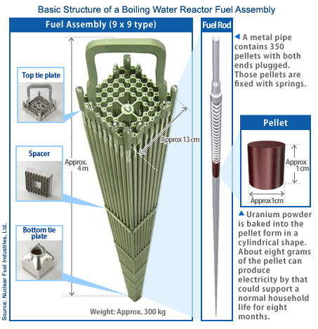 Boiling Water Reactor Nuclear Fuel Assembly - ALLOW IMAGES